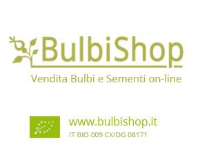 LogoBulbiShopBannerAGA